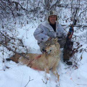 Регулирование волка на территории Бурзянского райохототделения
